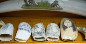 Scrimshawed Teeth